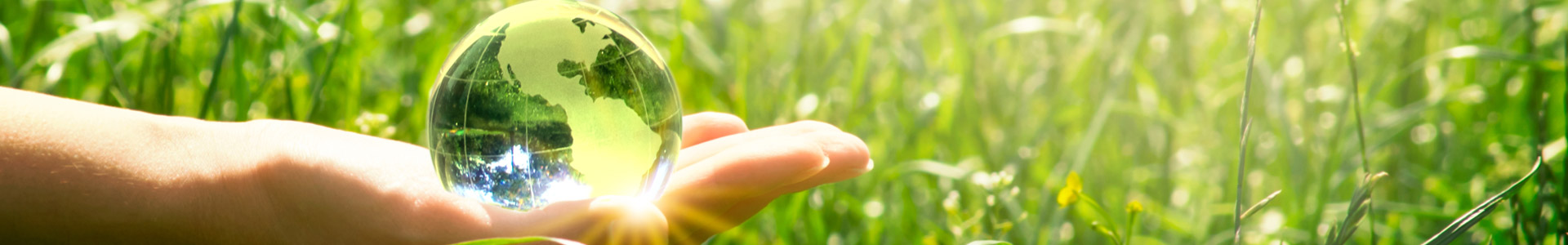 woman's hand holding a crystal globe in front of thick grass